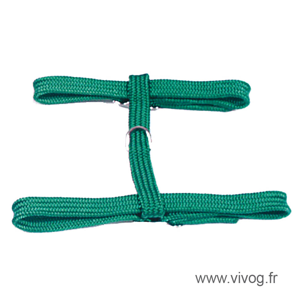 Cat harness - green