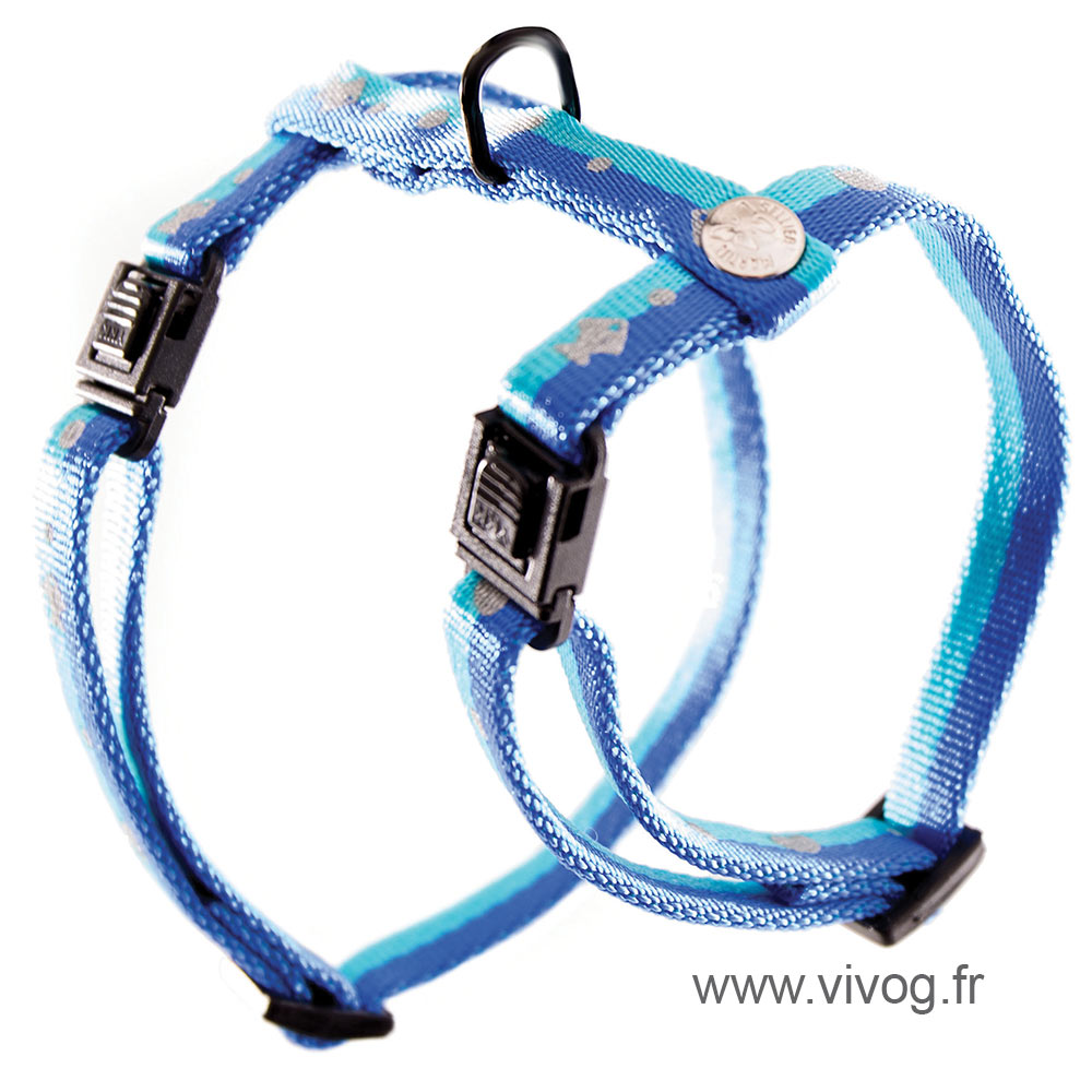 Harness for cat - Fish & Bicolor heart - blue