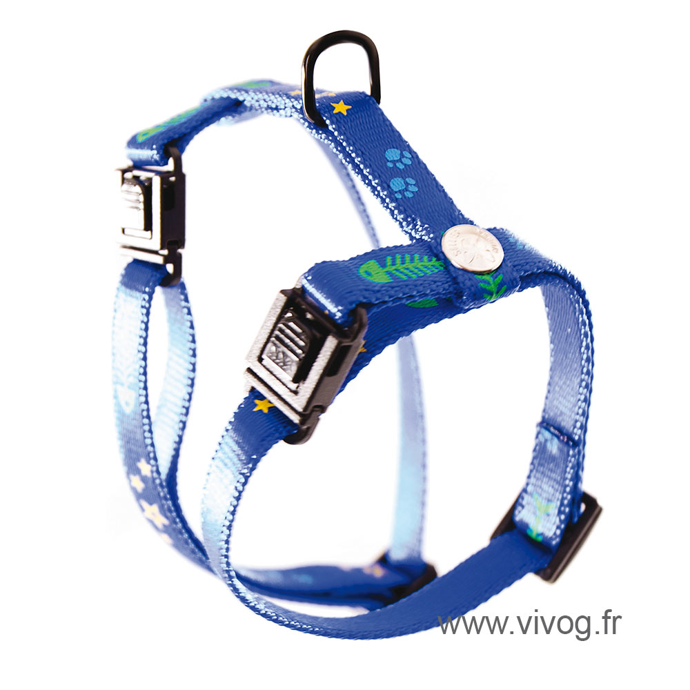 Harness for cat - Fish & Star - blue