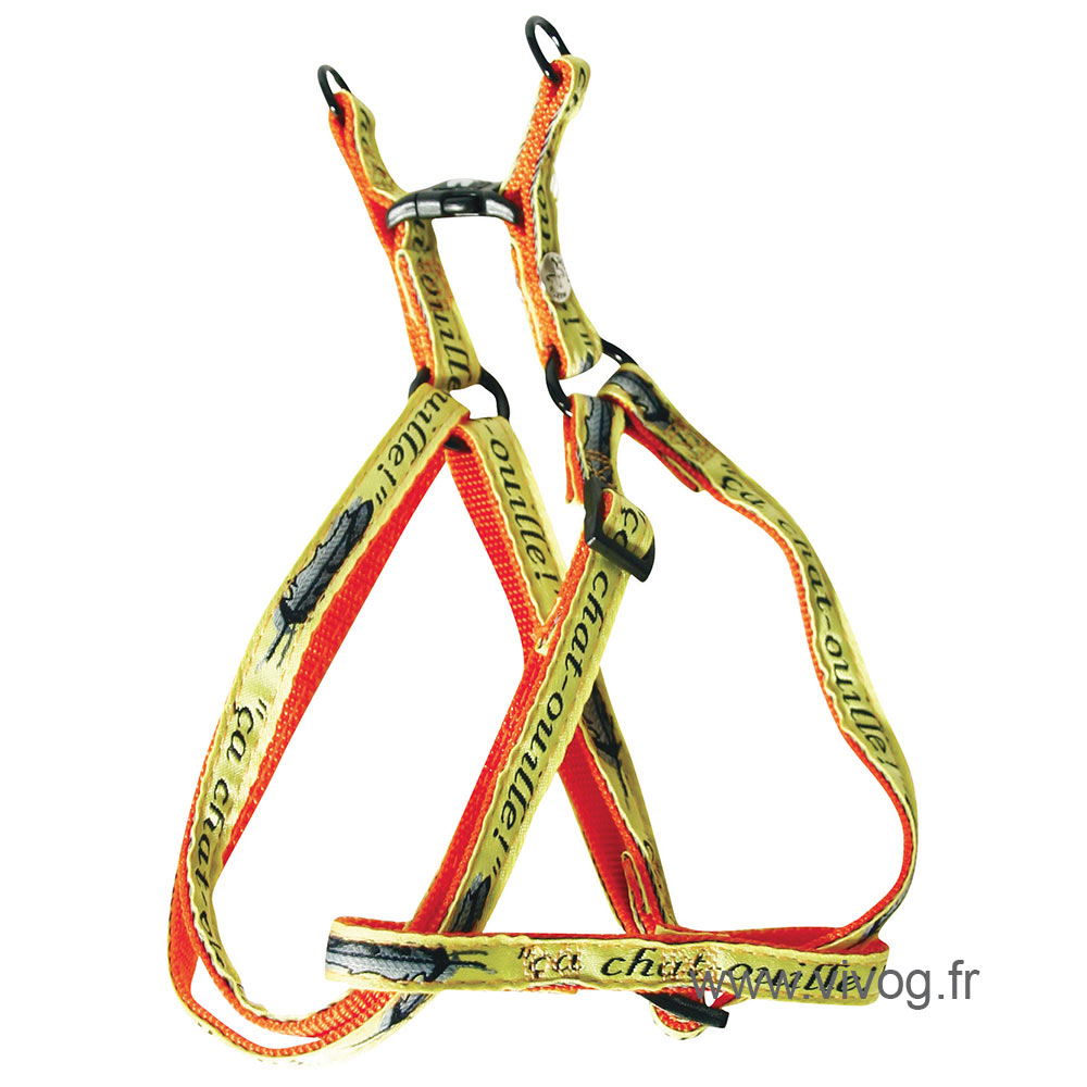 Step in harness for cat - Rigolos - Ca chat-ouille