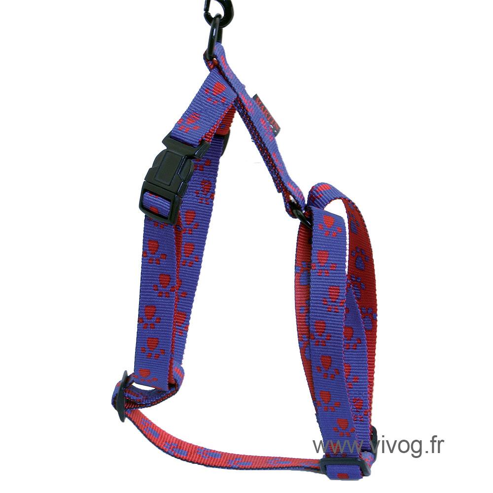 Harnais pour chien bleu rouge - pattes originales