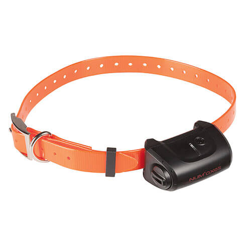 More informations about: Collar recall remote - CANICOM 500 - range 500m