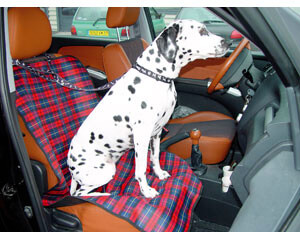 Protection FRONT SEAT - Scotland - 120x55cm
