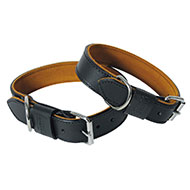 More informations about: Black Leather dog collar - Black & Tan