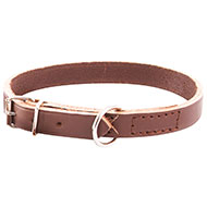 More informations about: Brown leather dog collar unlined oil