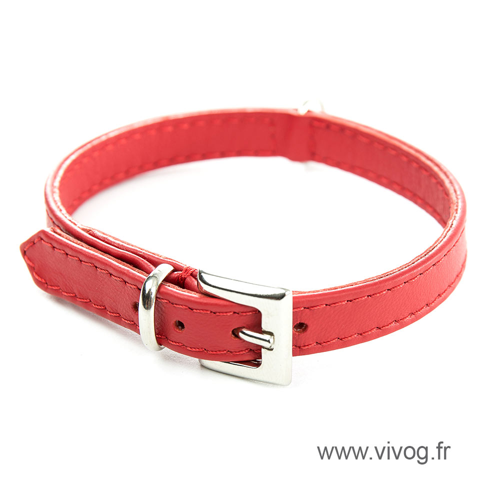 Red Leather Collar - special small dog collar united right
