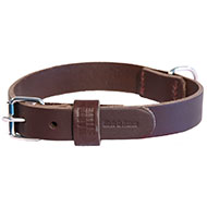More informations about: Brown leather dog Collar right - cut franc stung