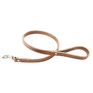 More informations about: Brown leather lead for dog - Special bulldog and mastiff