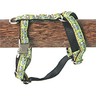 Dog harness - Oliver green - W10mm L25 to 35cm