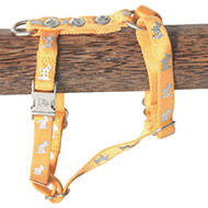 More informations about: Dog harness - Happy