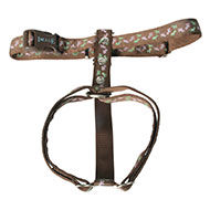 More informations about: Dog harness - Bayadere