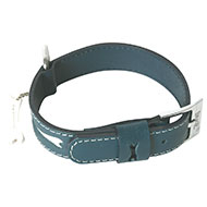 More informations about: Dog collar - Oliver