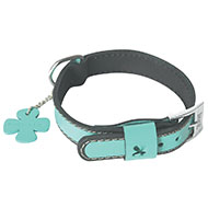 More informations about: Dog collar - Bowxy