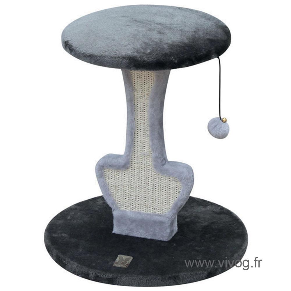 Griffoir chat - Champignon gris