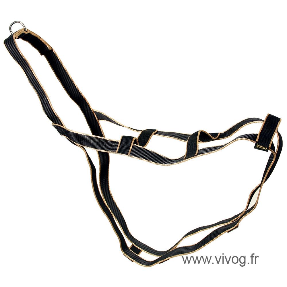 Harnais de traineau pour chien - Safran