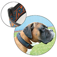 Dog collar and handle 2in1 for large dog - Jacquard Black & White