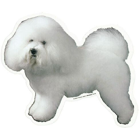 More informations about: Bichon Frize Sticker - 15cm