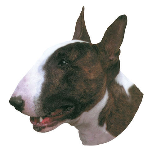 More informations about: Bull Terrier Sticker - 15cm