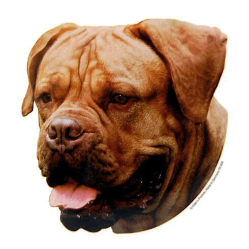 Plus d'informations sur le produit : Autocollant Dogue de Bordeaux - 15cm