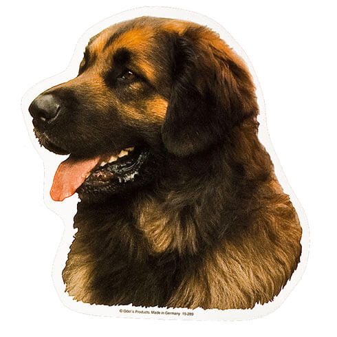 More informations about: Leonberger Sticker - 15cm