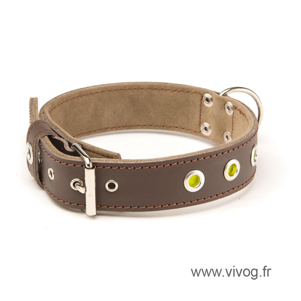 Collier cuir pour chien - Sportswear