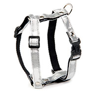 More informations about: Dog harness - White Disco