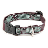 Dog collar - Dragonfly Effect - M - W25mm L35 to 55cm
