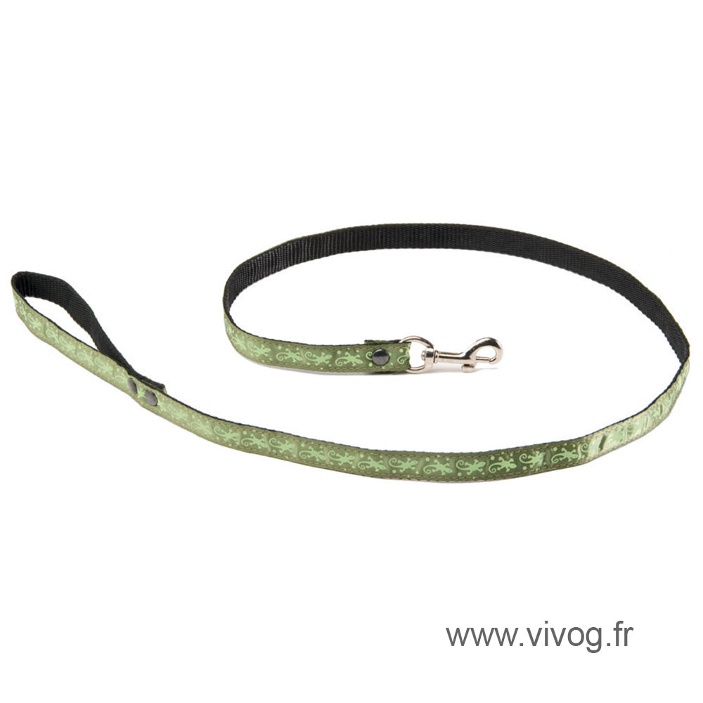 Laisse pour chien - Salamandre vert