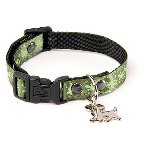 More informations about: Dog collar - green Salamander