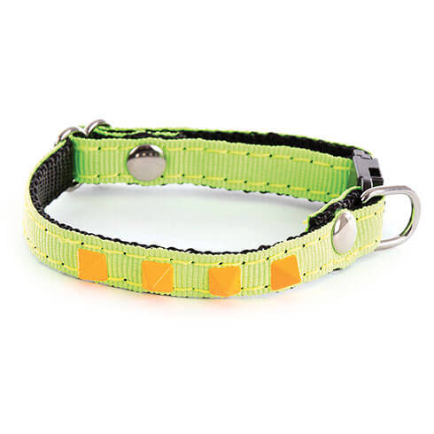 More informations about: Adjustable Cat and small dog Collar - Neon Color - green
