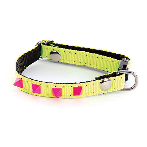 More informations about: Adjustable Cat and small dog Collar - Neon Color - yellow