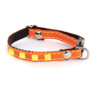 Adjustable Cat and small dog Collar - Neon Color - orange