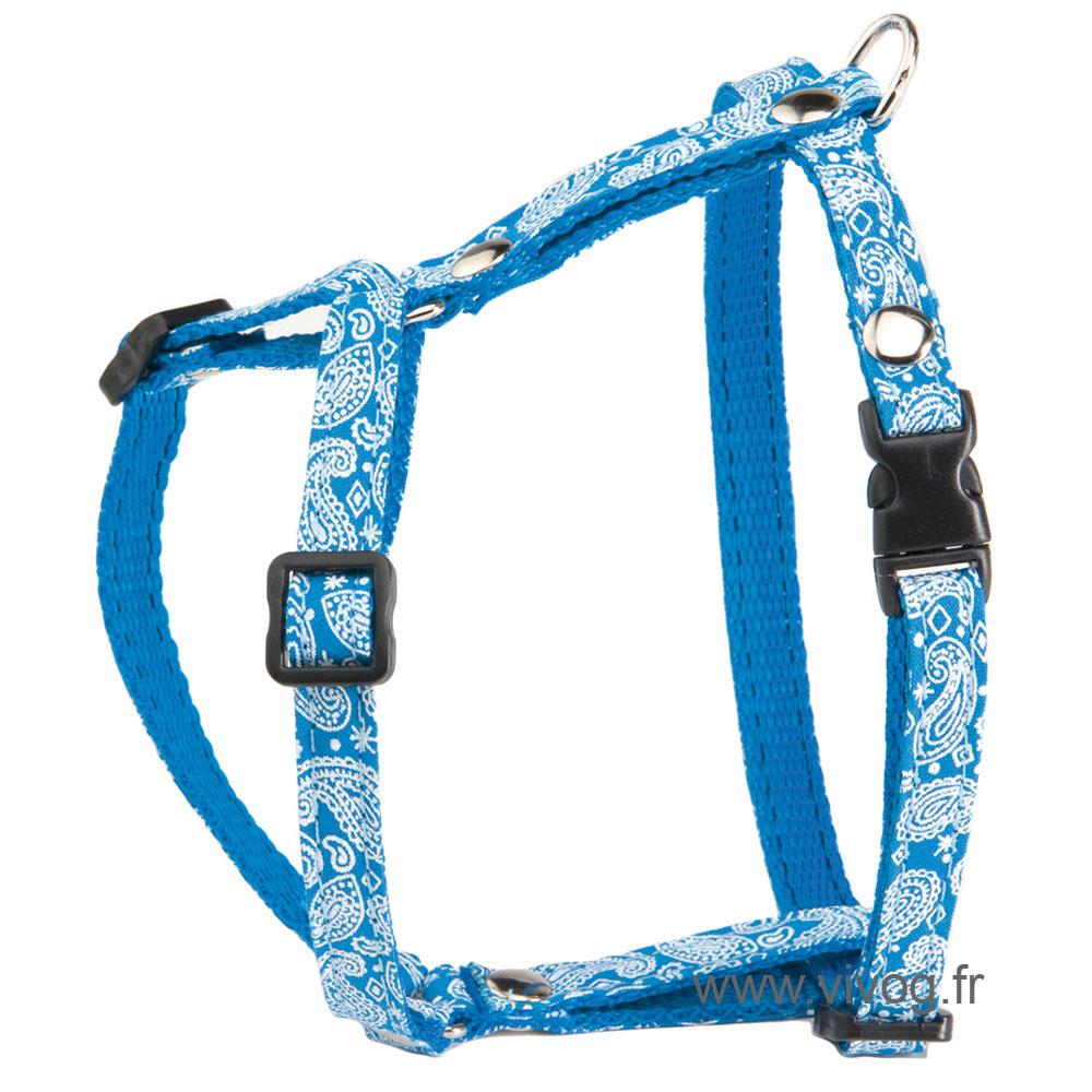 Cat harness - Bandana - Blue
