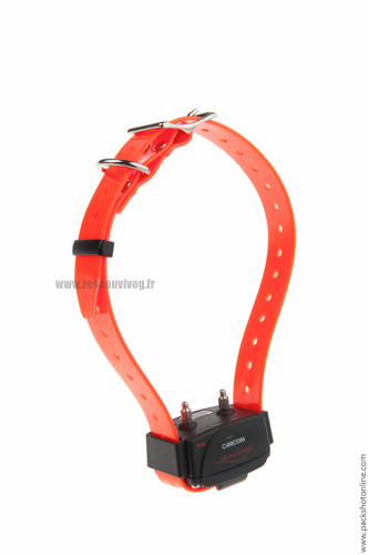 Added collar for CANICOM 800, 1500 and 1500PRO - fluorescent orange strap