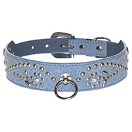 More informations about: Blue west collar