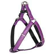 More informations about: Doremi purple harness