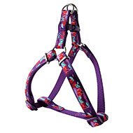 More informations about: Cherries nylon harness purple