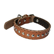 More informations about: Leather collar