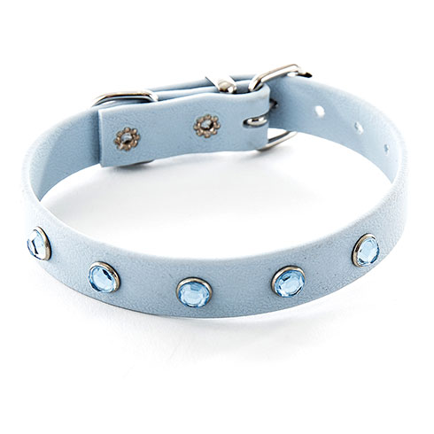 More informations about: Collier en bothane Boys bleu