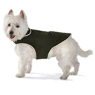 Plus d'informations sur le produit : Manteau - Dog Gone Smart - olive