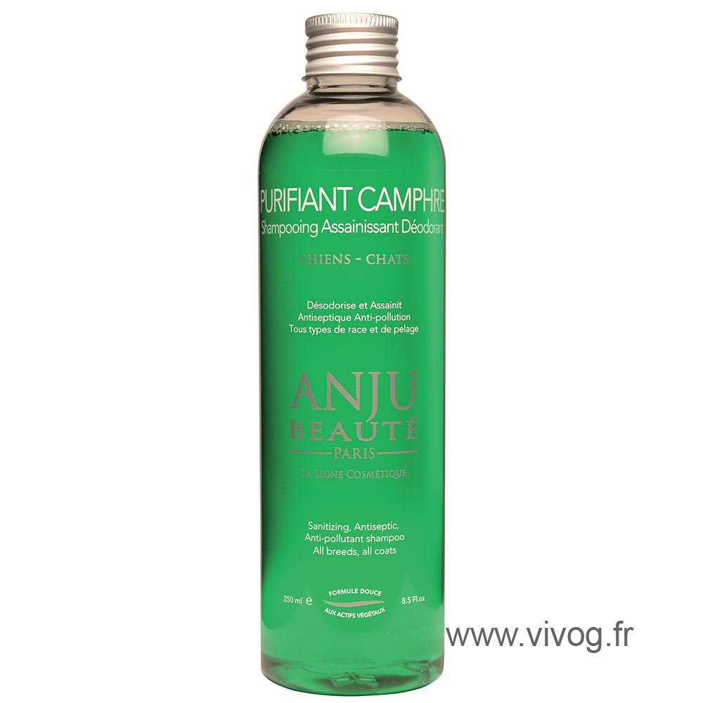 Anju Beauty Purifying Camphor shampoo