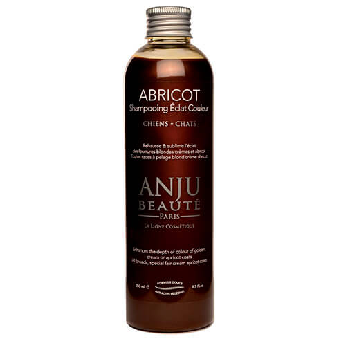 More informations about: Anju Beauty Apricto shampoo