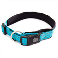 More informations about: Adjustable dog collar - Neo Blue