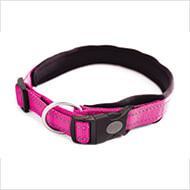 More informations about: Adjustable dog collar - Neo Pink