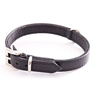 More informations about: Black Leather Collar - special small dog collar united right
