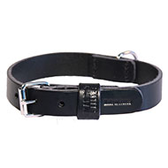 More informations about: Black leather dog Collar right - cut franc stung