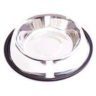 More informations about: Dog bowl - stainless steel Non-skid