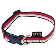 More informations about: Dog collar - Baya