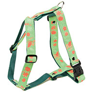 More informations about: Dog harness - Green's Floralie