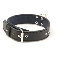 Leather Dog Collar - Leather Class - M - W25mm L42 to 48cm